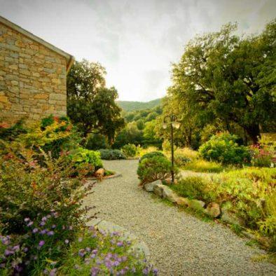 Maison d'hôtes Zella en Corse. Vue du jardin avec herbes aromatiques.